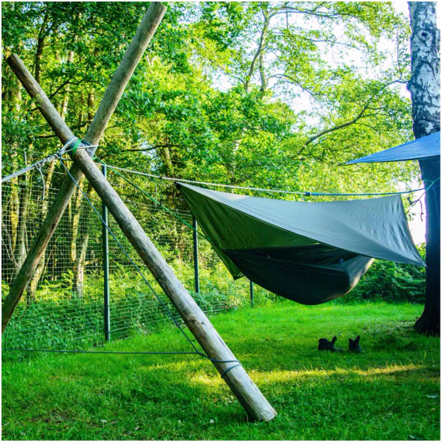 ultimate learn have guide camping with hammock in covers and need ll sleep pack go a how successful poles to this gear you plan trip everything hang post